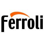 Котлы газовые напольные Ferroli